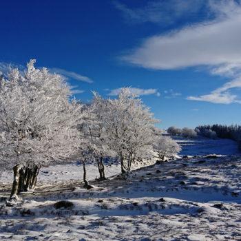 neige aubrac